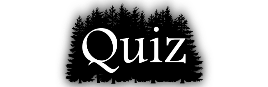 Horrorfilm Quiz