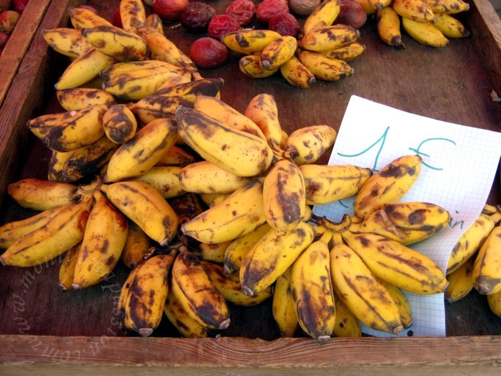 Quel prix pour une machine d'extraction jus de mangue ?