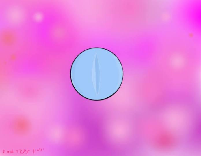 """סיפור ליום השבת – """"כדור הפלא"""" \ שושנה ויג"""