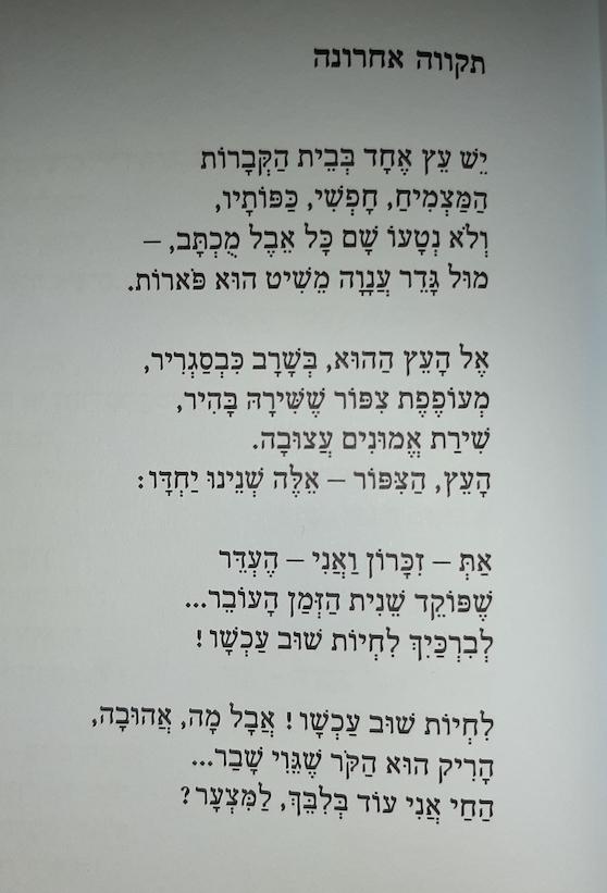 """פול ורלן ״תקווה אחרונה״ תרגום של עמינדב דיקמן מתוך """"פול ורלן   67 שירים"""""""