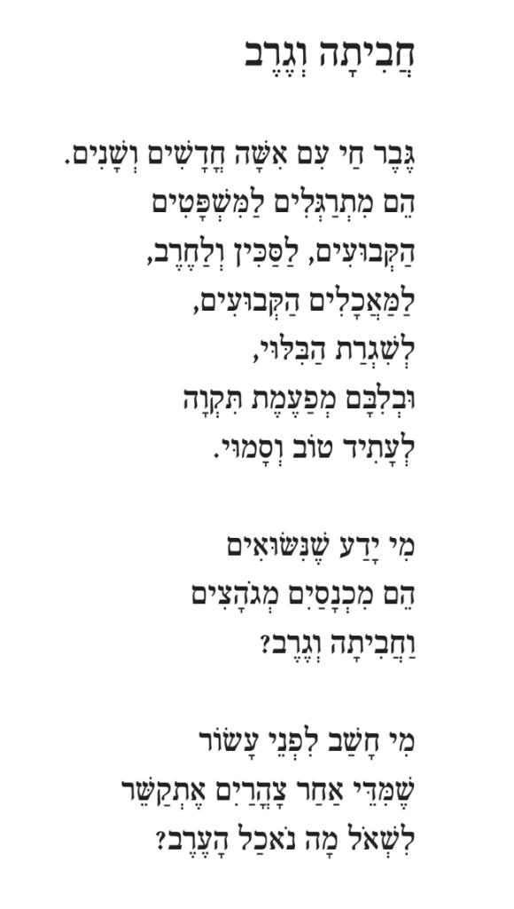 חביתה וגרב מאת יואב איתמר