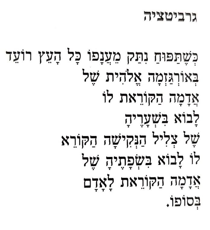 ״גרביטציה״ של אלעד זרט