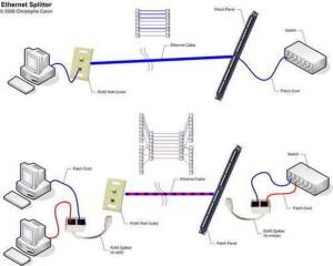 25FT Network Ether RJ45 Cat5E UTP PATCH CableCAT5 6