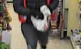 Appeal after 'zombie' robs Vange newsagents