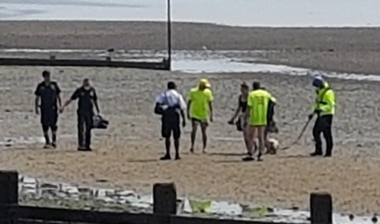 Chalkwell Lifeguards rescue injured woman from mudflats as tide comes in