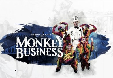 Redbridge policy change after rainbow monkey library incident