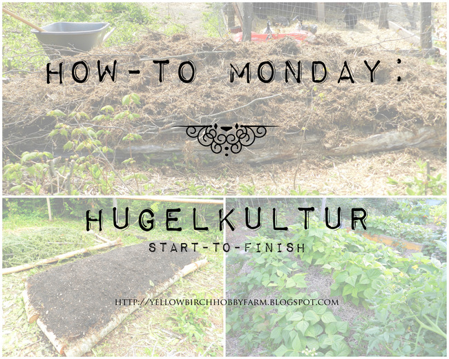 How-To: Hugelkultur Raised Garden Bed Start-to-Finish