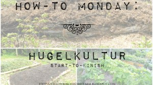 How-To: Hugelkultur Raised Garden Bed Start-to-Finish