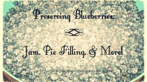 Preserving Blueberries: Jam, Syrup, Pie Filling, & More!