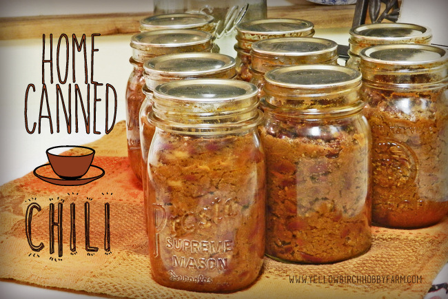 recipe: canning homemade chili [19]