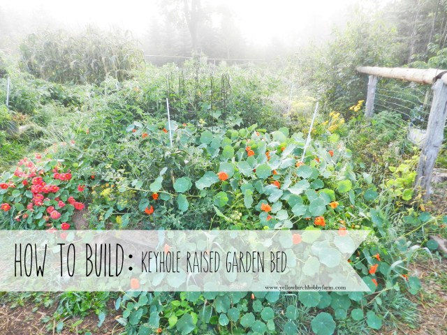 how-to-build-a-keyhole-raised-garden-bed