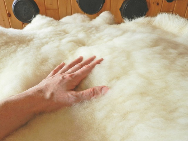 How to Make a Sheepskin Rug- Yellow Birch Hobby Farm