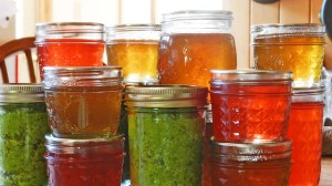 Home Canning: What Type of Canner Do I Even Use?