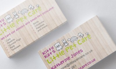 Little Pet Care Business Cards