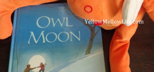 Owl Moon book review