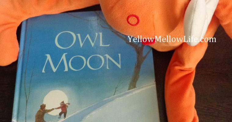 Owl Moon by Jane Yolen (Father's Day Gift Idea)