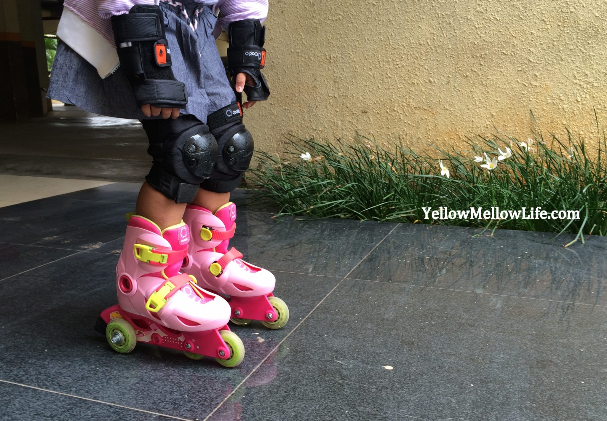 Can You Skate, Can you Roll?