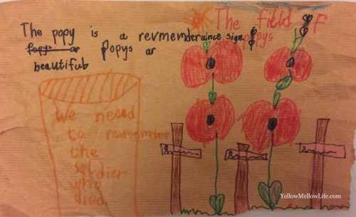 LittleB's Remembrance Day observation