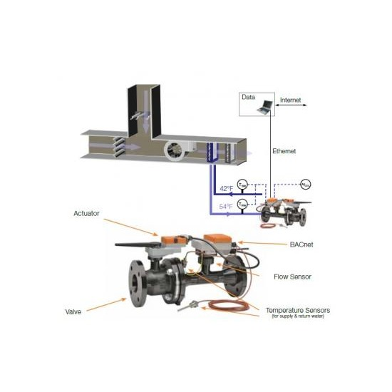 BELIMO Control Valve And Actuator for HVAC System