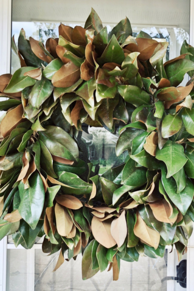DIY real magnolia wreath for indoors or outdoors. Perfect hanging on the front door or above the mantel.