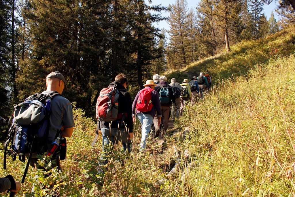 Land Adventures  Yellowstone National Park Lodges