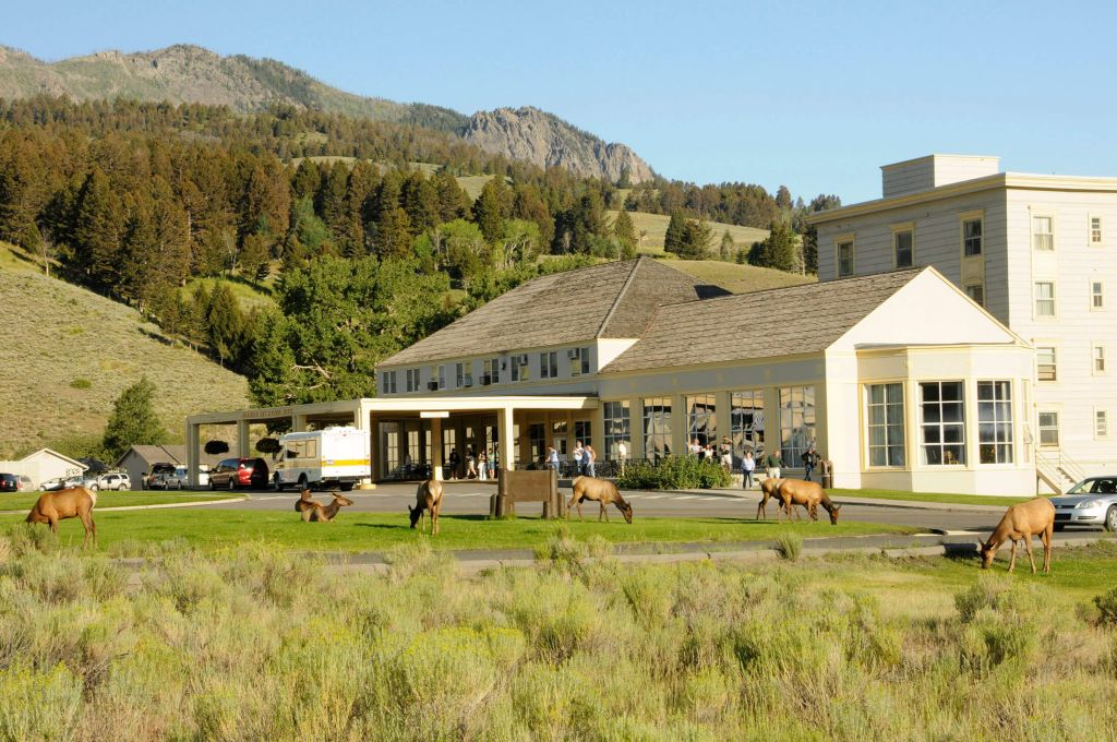 Mammoth Hot Springs Hotel  Cabins  Yellowstone National