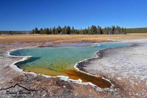 Summer Sightseeing Tours Yellowstone - Geyser in Yellowstone