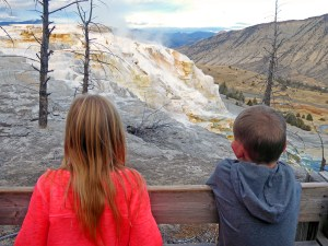 yellowstone family vacation packages