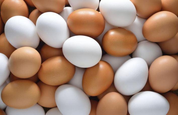 İşte yumurta kolisindeki 0-1-2-3 rakamlarının anlamı