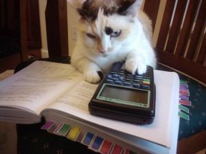 Según el ejemplo, los deberes me los hace hasta el gato.