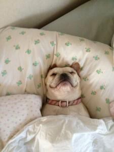 Más cómodo que pronunciar comfortable.