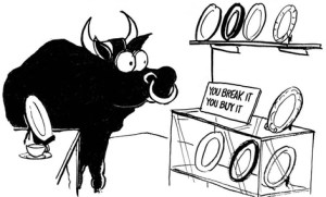 Idioms con animales Bull in a china shop