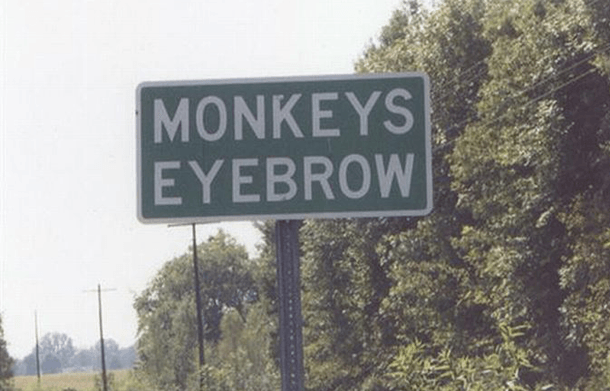 Monkey's Eyebrow