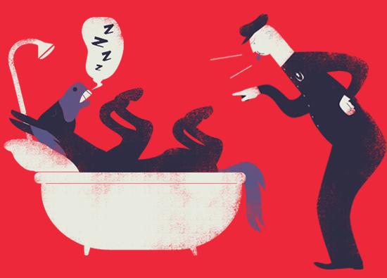 Leyes absurdas donkey in bathtub