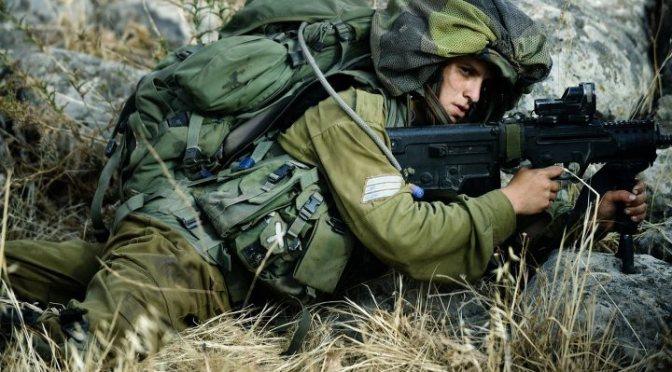 Leve het IDF!