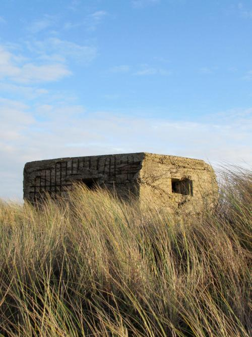 Seal Watching in North Norfolk - Yesihaveablog | World War II Pillbox Horsey | WW2 | Norfolk - Life in a Fine City | Winterlust