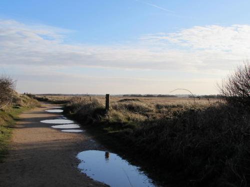 Seal Watching in North Norfolk - Yesihaveablog | Horsey Gap | Norfolk - Life in a Fine City | Winterlust
