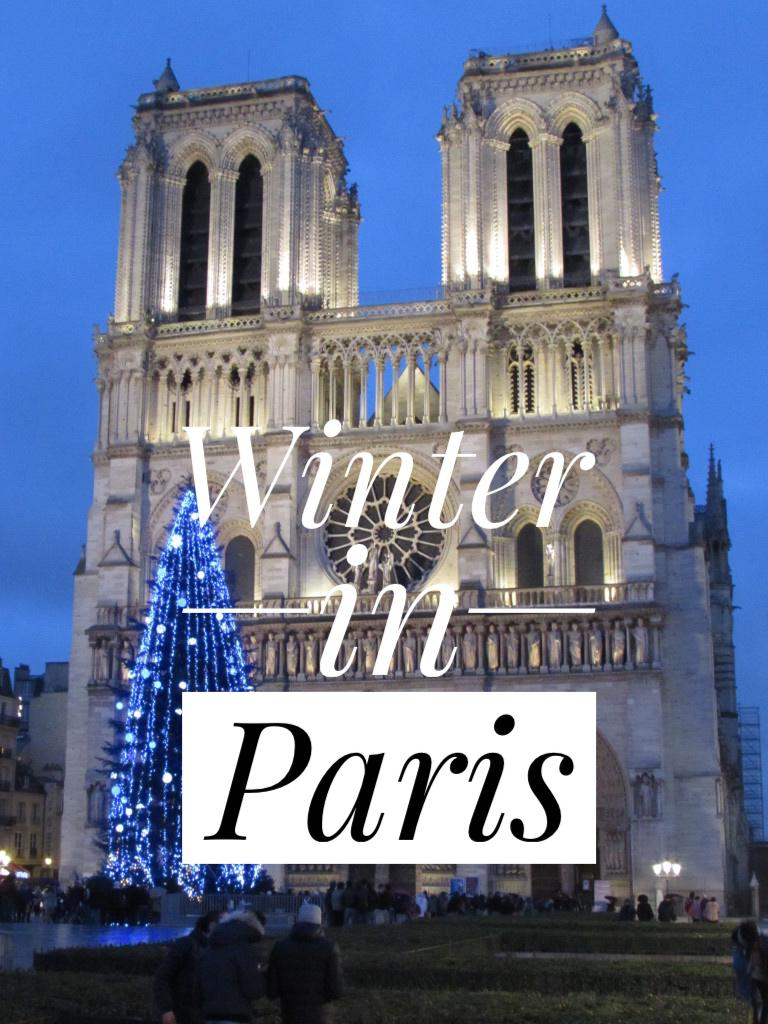 Yesihaveablog | 24 hours in Paris | Winter in Europe | Holiday Season | Winterlust