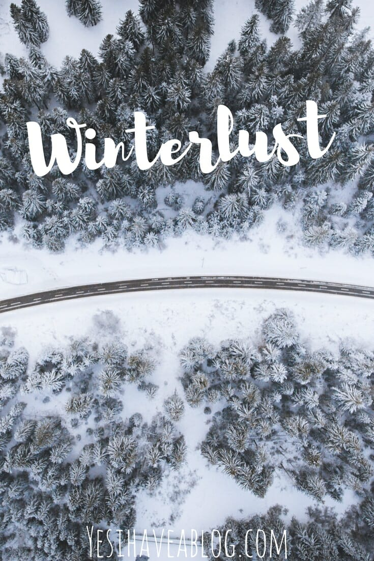 Snowy Winter Forest Scene | Winterlust - Yesihaveablog | Winter Travel