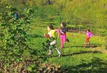 Taraklı Karagöl Çocuk Kampı