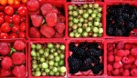 6 Simple Ways to Preserve Foods From Your Garden