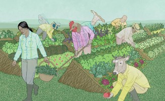perennial-farming-credit-jon-adams.jpg