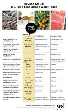 Beyond GMOs Infographic