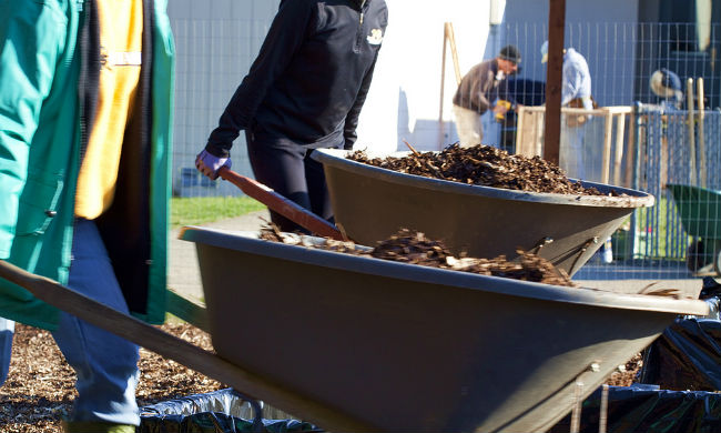 Compost2_650.jpg