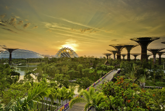 Gardens by the Bay in Singapore. Photo by Piyavachara Nacchanandana.