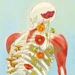 4 Ways to Give Your Body Back to Nature After You Die