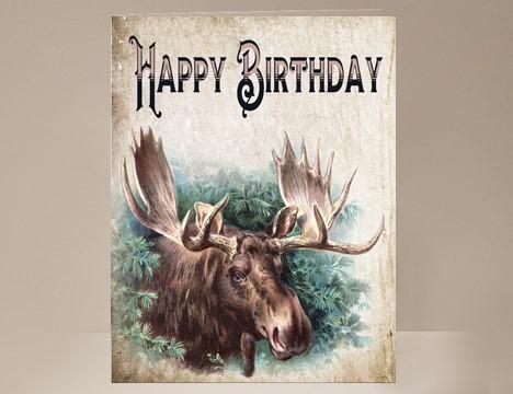 Moose Birthday Card Yesterdays Best