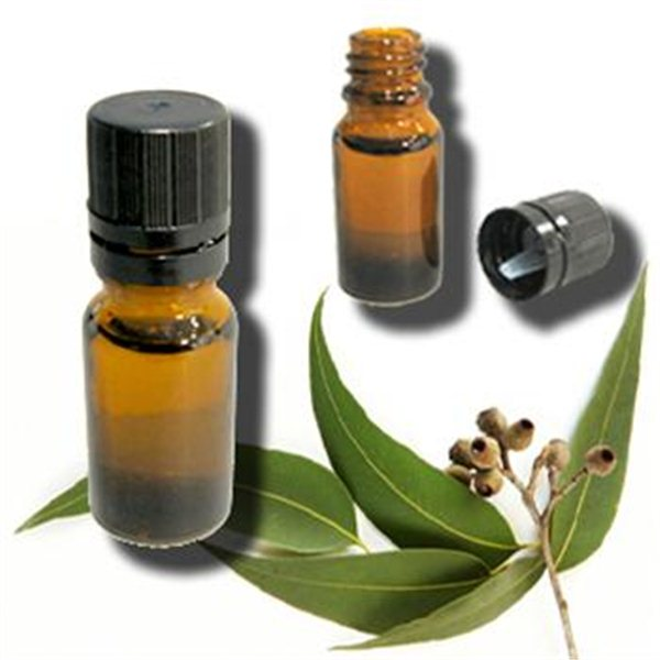 Image Result For Tea Tree Oil What Is It Good For