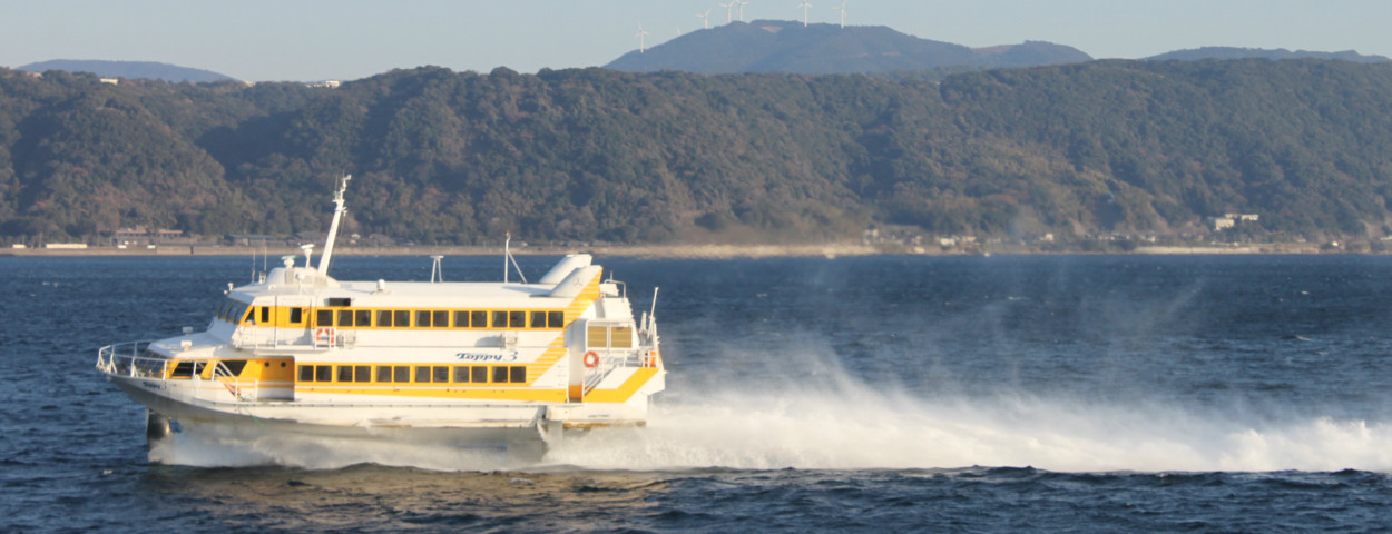 Image result for yakushima ferry
