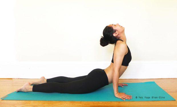 Bhujangasana Posture Cobra Yes Yoga Bien Etre